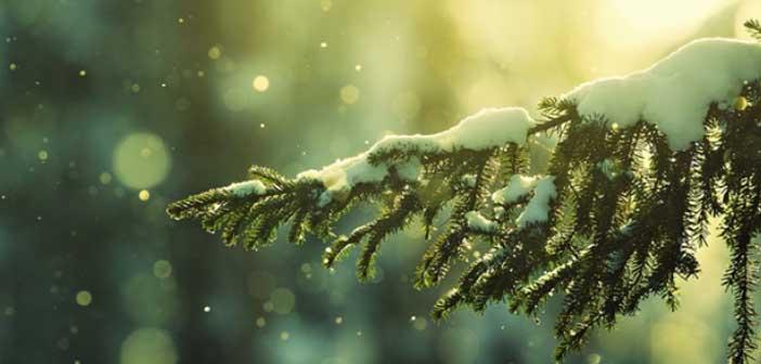 Kerstmuziek, kerstnummers, kerstliedje